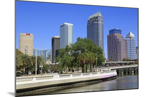 Tampa Skyline and Hillsborough River, Tampa, Florida, United States of America, North America-Richard Cummins-Mounted Photographic Print