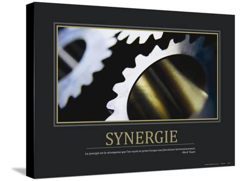 Synergie (French Translation)--Stretched Canvas Print