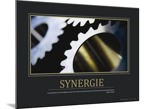 Synergie (French Translation)--Mounted Photo