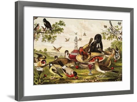 Color Print of Birds Feasting on a Fruit Pie--Framed Art Print