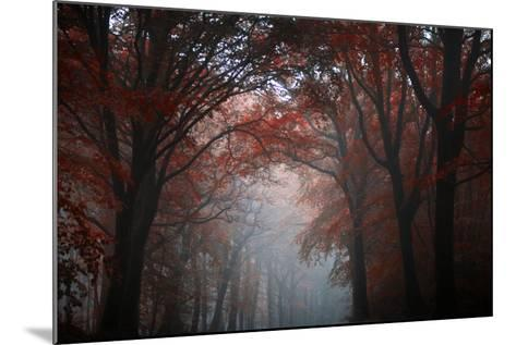 Red Forest-Philippe Manguin-Mounted Photographic Print