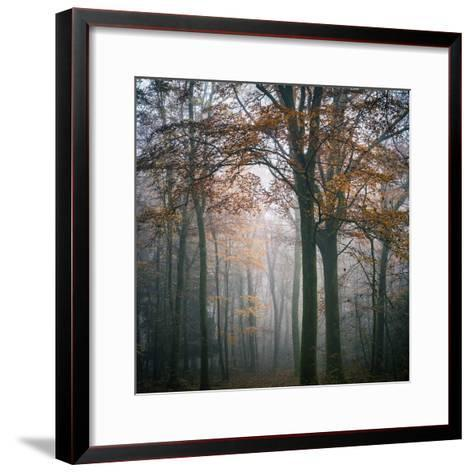 Forest Mood-Philippe Manguin-Framed Art Print