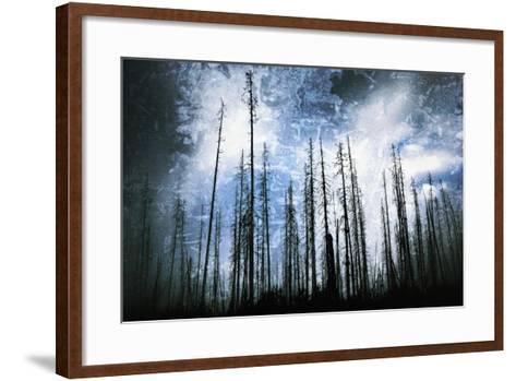 Cold Night-Ursula Abresch-Framed Art Print