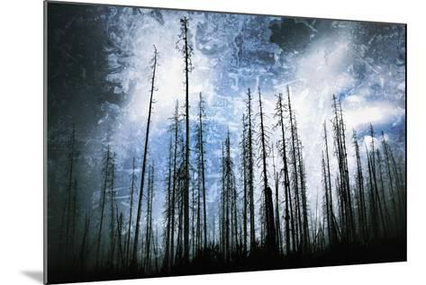 Cold Night-Ursula Abresch-Mounted Photographic Print