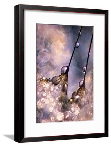 Dancing Seedlings-Ursula Abresch-Framed Art Print