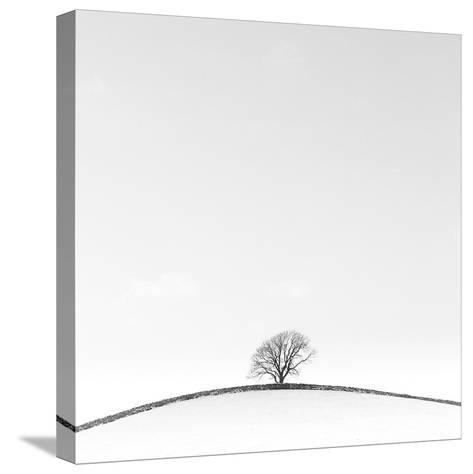 On the Crest-Doug Chinnery-Stretched Canvas Print