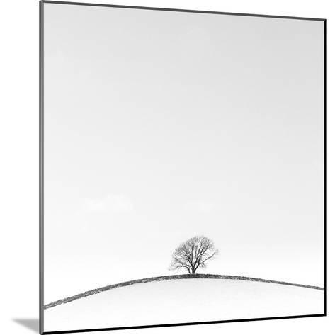 On the Crest-Doug Chinnery-Mounted Photographic Print