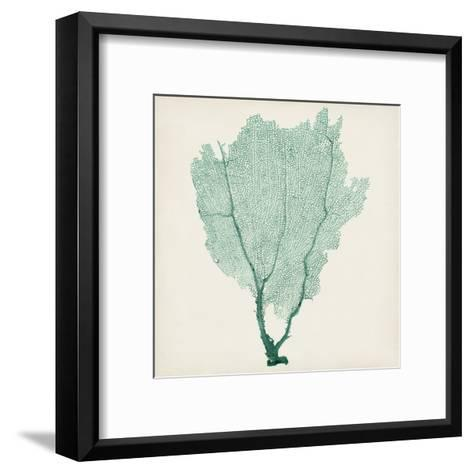 Sea Fan I-Vision Studio-Framed Art Print