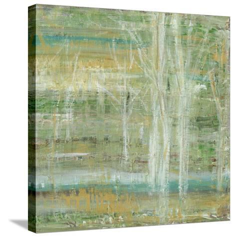 Harbinger II-Lisa Choate-Stretched Canvas Print