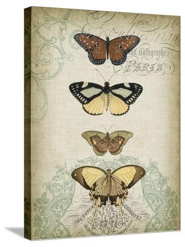 Cartouche and Butterflies I-Jennifer Goldberger-Stretched Canvas Print