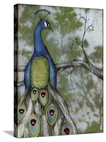 Peacock Reflections II-Jennifer Goldberger-Stretched Canvas Print