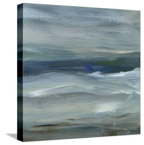 Denim Dance II-Lisa Choate-Stretched Canvas Print