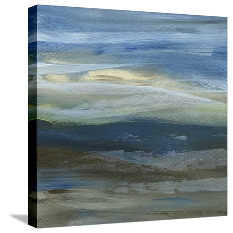 Denim Dance III-Lisa Choate-Stretched Canvas Print
