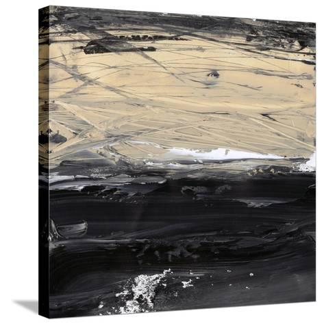 Dynamics III-Ethan Harper-Stretched Canvas Print