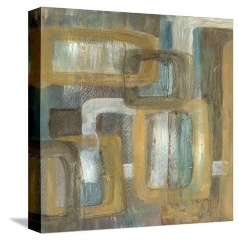 Frame Link I-Lisa Choate-Stretched Canvas Print