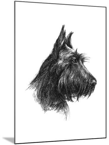 Canine Study II-Ethan Harper-Mounted Art Print