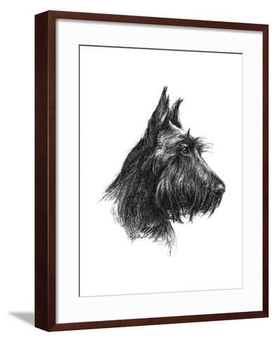 Canine Study II-Ethan Harper-Framed Art Print