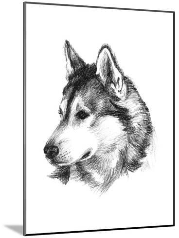 Canine Study III-Ethan Harper-Mounted Art Print