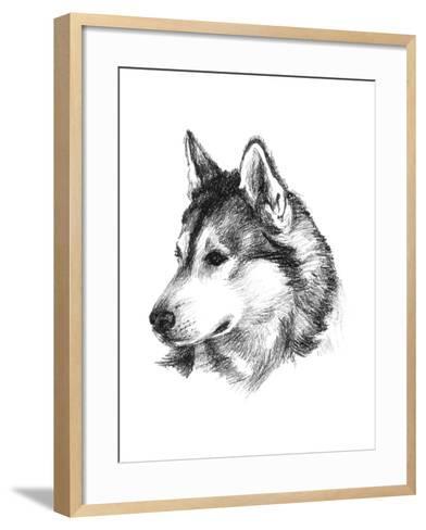 Canine Study III-Ethan Harper-Framed Art Print