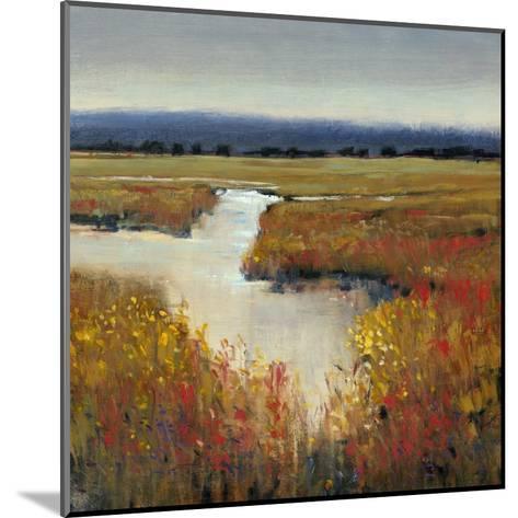Marsh Land I-Tim O'toole-Mounted Art Print