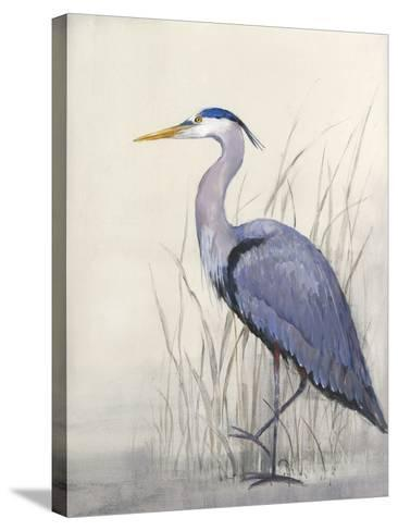 Non-Embellished Keeping Watch II-Tim O'toole-Stretched Canvas Print