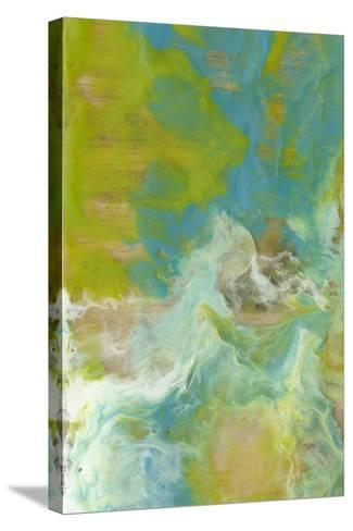 Amorphous I-Jennifer Goldberger-Stretched Canvas Print