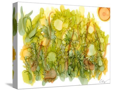 Sunlit Poppies IV-Cheryl Baynes-Stretched Canvas Print