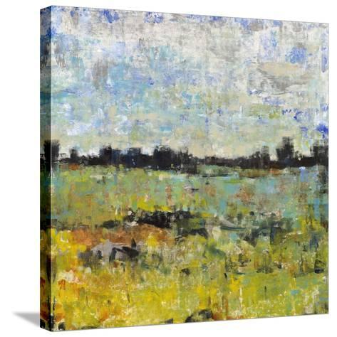 Across the Tall Grass I-Tim OToole-Stretched Canvas Print