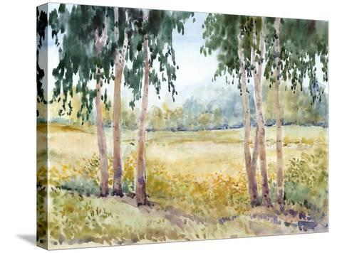 Luminous Meadow II-Tim O'toole-Stretched Canvas Print