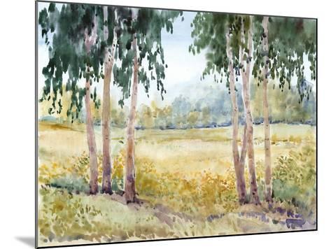 Luminous Meadow II-Tim O'toole-Mounted Art Print