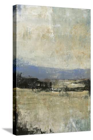 Serenade I-Tim OToole-Stretched Canvas Print