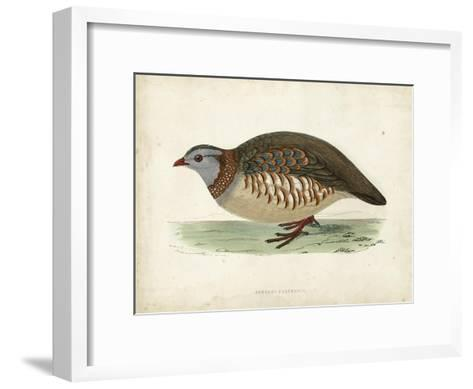 Morris Pheasants III--Framed Art Print