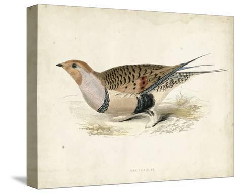 Morris Pheasants V--Stretched Canvas Print