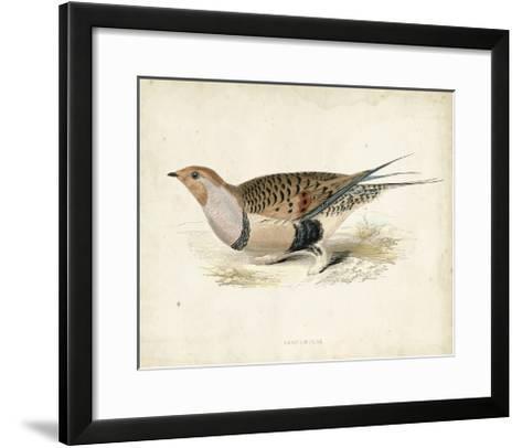 Morris Pheasants V--Framed Art Print