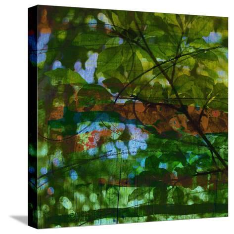 Abstract Leaf Study IV-Sisa Jasper-Stretched Canvas Print