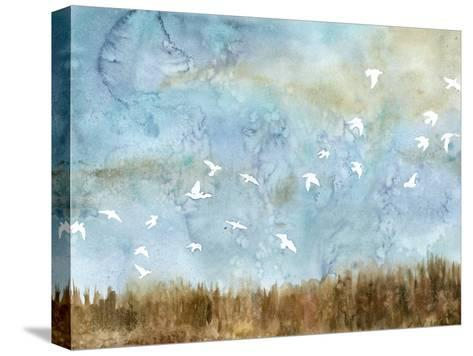 Birds in Flight I-Megan Meagher-Stretched Canvas Print