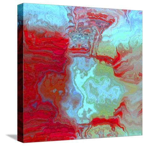 Coral Glass I-Danielle Harrington-Stretched Canvas Print