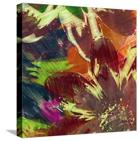 Floragraph IV-James Burghardt-Stretched Canvas Print