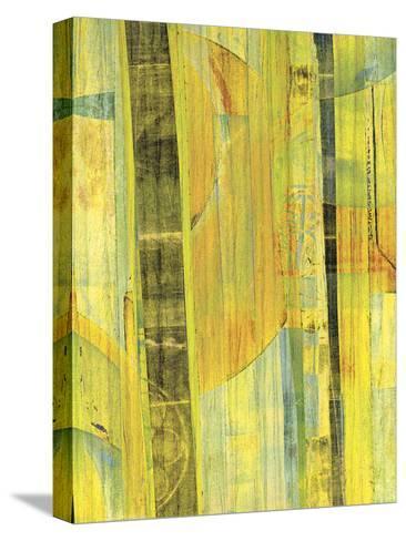 Yellow Mix II-Ricki Mountain-Stretched Canvas Print