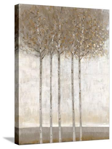 Early Fall II-Tim O'toole-Stretched Canvas Print