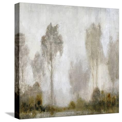 Misty Marsh I-Tim O'toole-Stretched Canvas Print