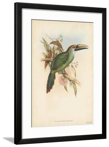 Tropical Toucans I-John Gould-Framed Art Print