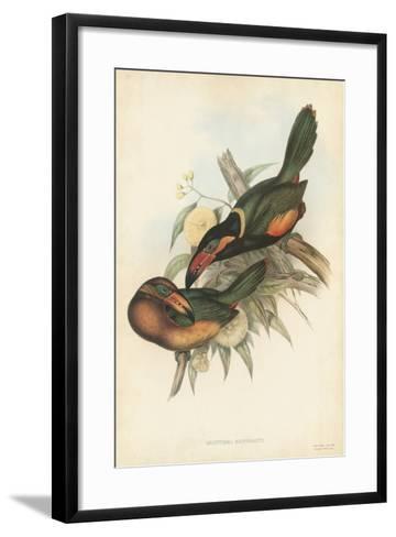 Tropical Toucans V-John Gould-Framed Art Print