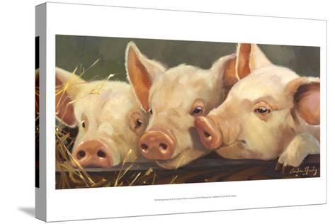Pig Heaven-Carolyne Hawley-Stretched Canvas Print