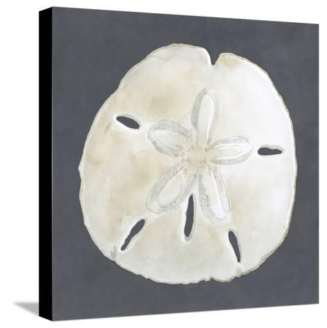 Shell on Slate II-Megan Meagher-Stretched Canvas Print