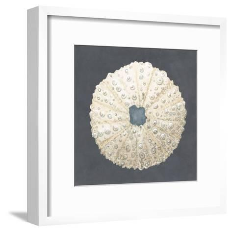 Shell on Slate VII-Megan Meagher-Framed Art Print