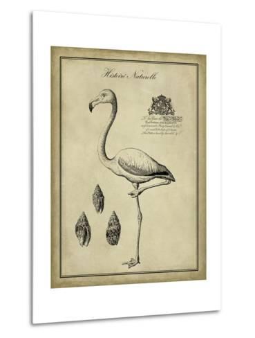 Antiquarian Flamingo-Vision Studio-Metal Print