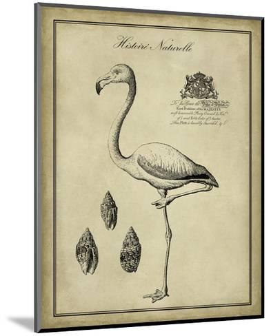 Antiquarian Flamingo-Vision Studio-Mounted Art Print