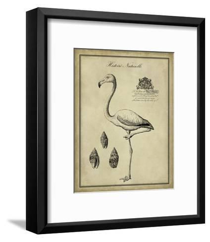 Antiquarian Flamingo-Vision Studio-Framed Art Print
