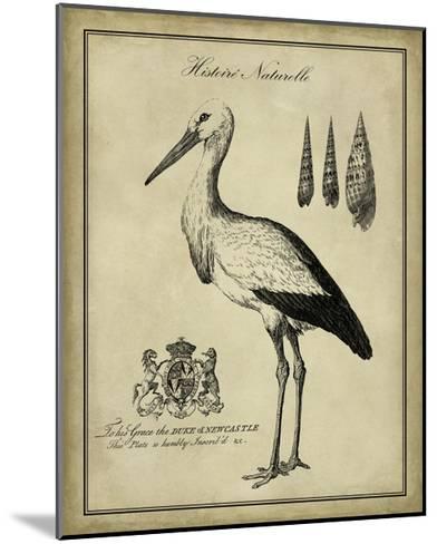 Antiquarian Stork-Vision Studio-Mounted Art Print